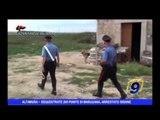 ALTAMURA | Sequestrate 200 piante di marijuana, arrestato 58enne