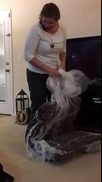 The Unboxing of a Big Barker Dog Bed