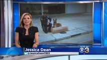 "CBS Channel 3 - ""Big Barker Donates 42 Beds to Philadelphia Police K9 Unit"""