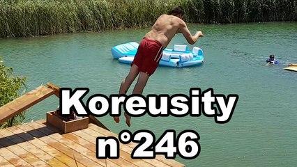 Koreusity n°246