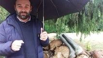 Avant Oyonnax / Agen : chantons sous la pluie...