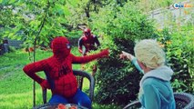 SPIDERMAN PREGNANT & Frozen Elsa w/ Mermaid Hulk vs Zombie SuperHeroes in Real Life Episode 17