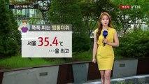 [날씨] 서울 올 최고 35.4℃...당분간 푹푹 찐다 / YTN