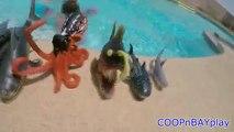 Apprendre des noms de Mer animaux apprentissage enfants vidéo requin jouets enfants parc faire glisser dans eau