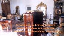 Vente aux enchères au château de Chénas