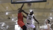 6'10 DAVID McCORMACK IS A MONSTER | OFFICIAL JUNIOR SEASON MIX!