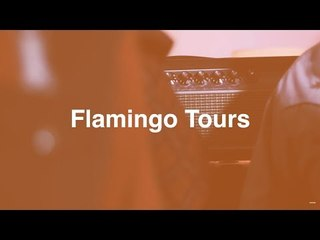 Entrevista a Flamingo Tours para #MusicPeople | La Cupula Music