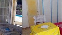 A louer - Maison/villa - Saint Mitre les Remparts (13920) - 1 pièce - 18m²