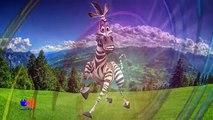 Animaux la famille doigt pour enfants Apprendre Ma chansons sauvage Compilation 60 animaux |