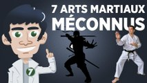 7 arts martiaux méconnus