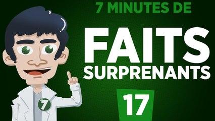 7 minutes de faits surprenants #17