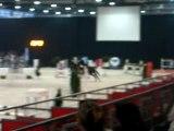 Concours au Salon du Cheval