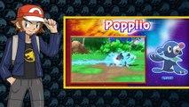 POPPLIO EVOLUTION DESIGN CONCEPTS!   Pokemon Sun and Moon Starter Evolutions