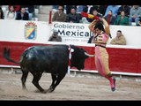 La Luna y el Toro ↓ El toro y la Luna-(Ese Toro enamorado de la Luna) [Cumbia]
