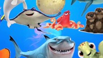 Learn Sea Animals + Water Animals Names and Counting to 10 with Ocean Dory Cartoon Animal For Kids
