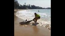 Un homme tente de remettre à la mer un requin échoué sur une sur plage