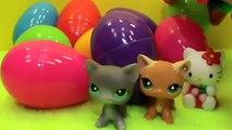 Des œufs bonjour Salut trousse minou ouvrir animal de compagnie Boutique ranchers jouets avec Surprise lps hasbro