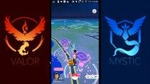 Pokemon go| found a mewtwo in pokemon go INDIA | And the rarest pokemon in pokemon go ever found||