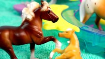 Summer Pool Party - Breyer Horses Stablemates Mares Stallions Foals Horse Water Play Video