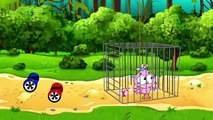 Birds Family Inflate Chewing Gum Full Episodes Cartoon Animation Nursery Rhymes