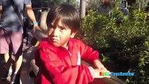 Amusement Parks for Kids Family Fun Outdoor Theme Park Disney World Roller Coasters Splash Mountain