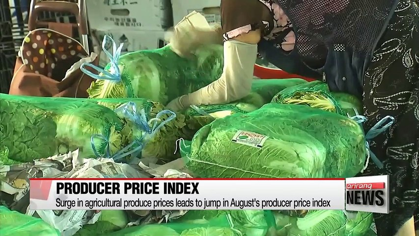 Surge in agricultural produce prices leads to jump in August's producer price index