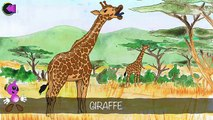 Learn African Animals : Kids Picture Book App on iPhone - Fun African Wildlife Puzzle