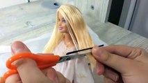 Corte de pelo Barbie corte de pelo ||
