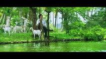 Basheerinte Premalekhanam|Penne Penne Song Video|Farhaan Faasil,Sana Althaf| Vishnu Mohan Sithara|H