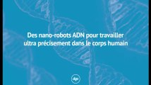 Des nano-robots ADN pour travailler ultra précisément dans le corps humain