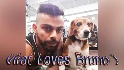 Virat kohli in Gym with his pet Bruno - Proper Domination