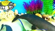 Poisson pour enfants requin jouets baleine 12 collection orque nemo requin requin