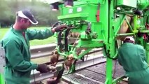 World Modern Technology Automatic Cow Shoeing and Cleaning Mega Machine Factory on Wheels