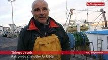 Insolite. Un chalutier de Quiberon pêche un vieux canon