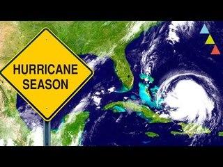 Cómo sobrevivir a un huracán