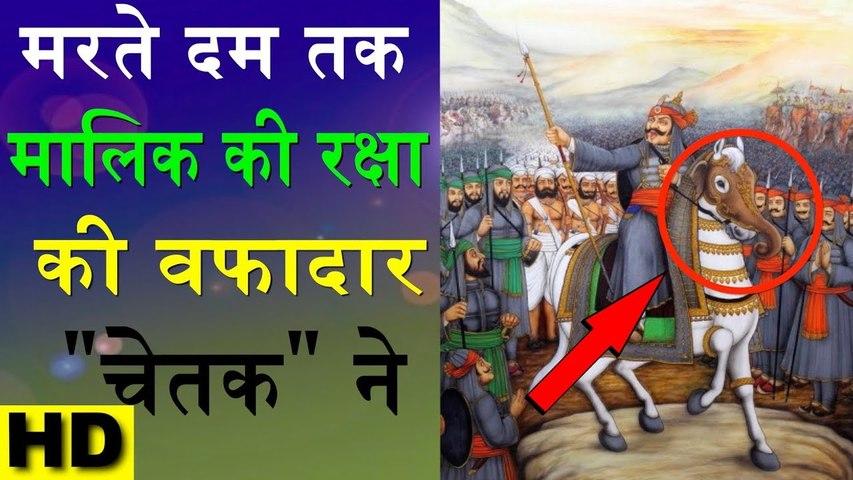 "महाराणा प्रताप का अद्भुत घोड़ा चेतक की कहानी   Story Of Maharana Pratap Horse ""Chetak""   Fact India"