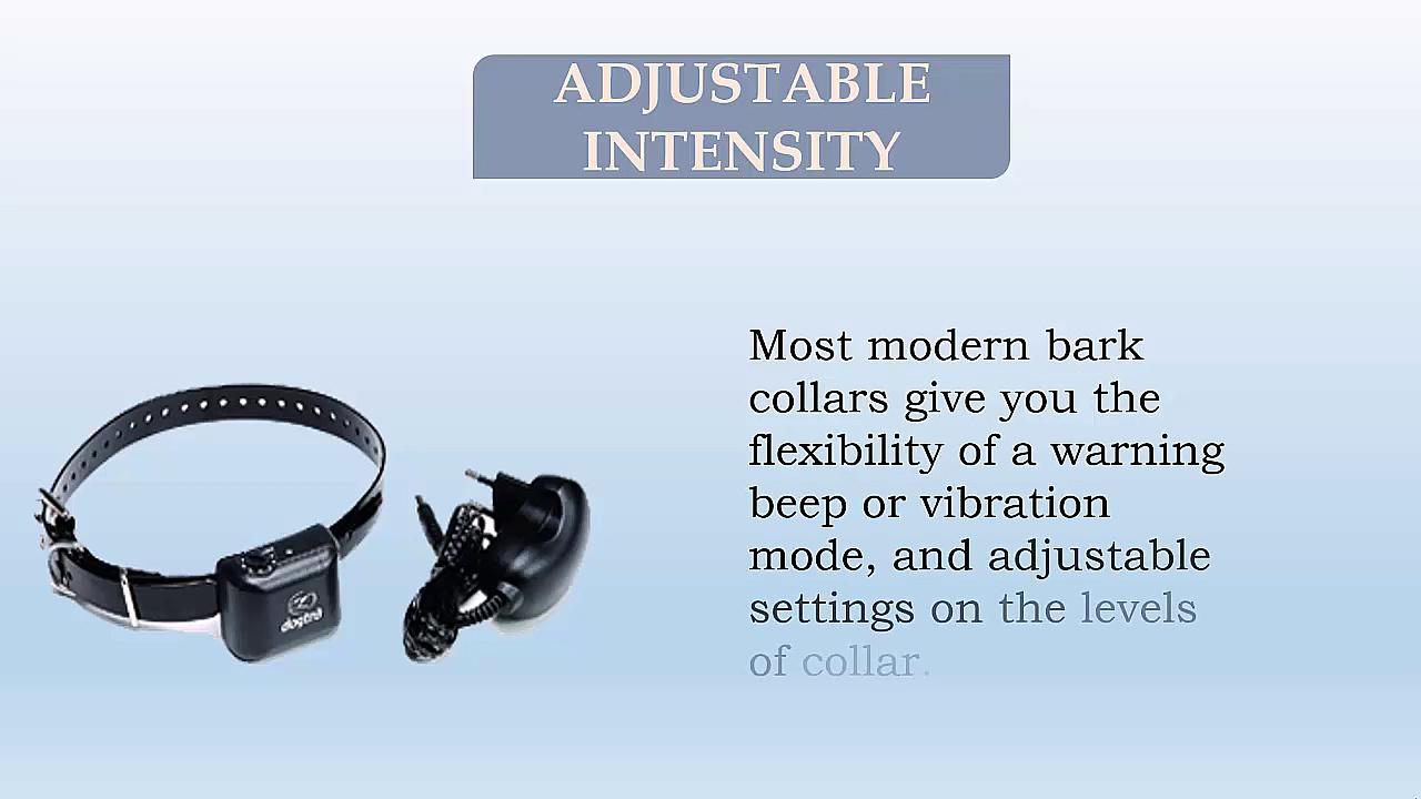 Advantages of dog bark collar