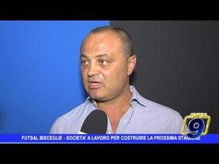 Futsal Bisceglie | Società al lavoro per costruire la prossima stagione