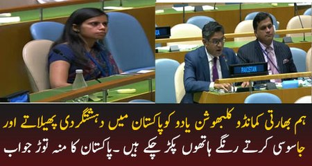 Pakistan's response to India at the General Debate in United Nations General Assembly