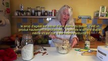 Biscuits sans gluten végétalien || sans oeuf sans lait sans huile sans