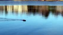 Pêcher avec un bateau radiocommandé