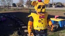 FNAF Minecraft: Freddy, Chica, Bonnie, Foxy, Fredbear   Mine Nights at Freddys: FNAF Song