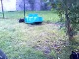 Bébés bouledogue français dans le jardin