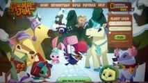 Beanie Boos: ANABELLE PLAYS ANIMAL JAM!