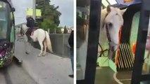 Un homme monte à cheval dans un tramway à Montpellier