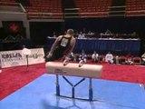 Bill Roth - Pommel Horse - 1996 U.S. Gymnastics Championships - Men