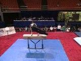 Blaine Wilson - Pommel Horse - 1996 U.S. Gymnastics Championships - Men