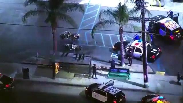 Police Chase Harley Davidson