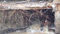 Artvin - Arhavi'de Dere Yatağı Üzerindeki Yapı Kabus Oldu!