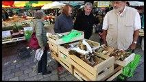 Des cèpes sur le marché de Périgueux